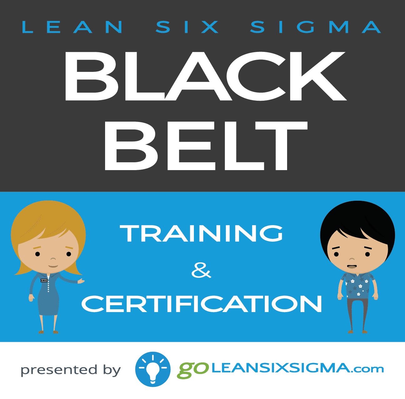 go lean six sigma Black belt training