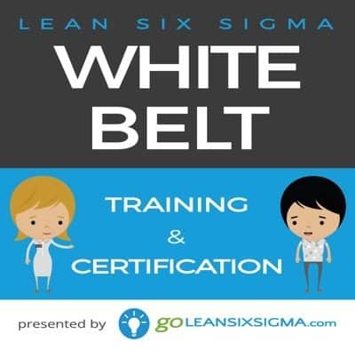 Goleansixsigma white Coupon Code
