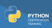 25% OFF – Python Certification Training